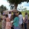Dairy buck arriving in a village